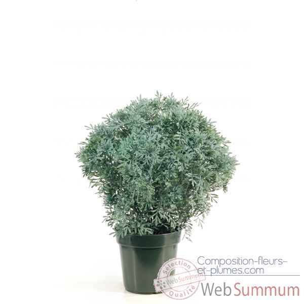 Citroenkruid topiary en pot Louis Maes -03237.000