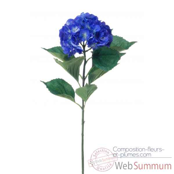 Hortensia grand Louis Maes -04699.565