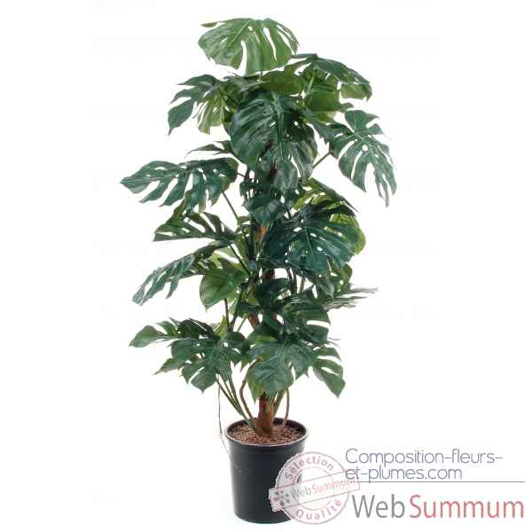 Monstera (split philo) 140 cm en pot Louis Maes -03305.000K