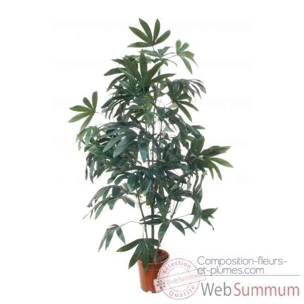 Palmier 140 cm en pot k louis maes dans arbre for Palmier dans pot