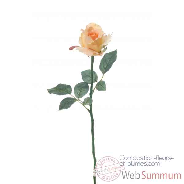Rose ouverte alice Louis Maes -05580.454