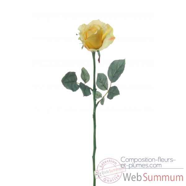 Rose ouverte alice Louis Maes -05580.475