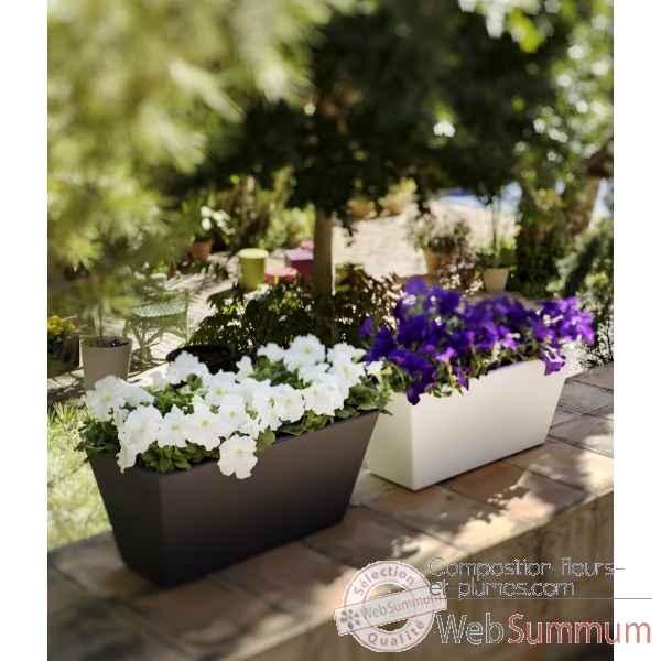 Composition de fleurs en jardini re id e d 39 image de fleur - Fleur de jardiniere ...